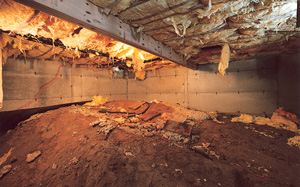 Crawl Space Moisture Barrier before in Washington D.C.